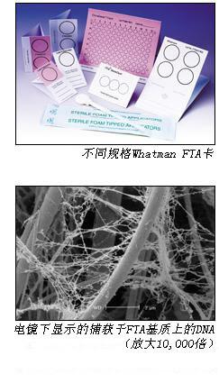 Whatman, FTA卡 核酸收集、储存和纯化