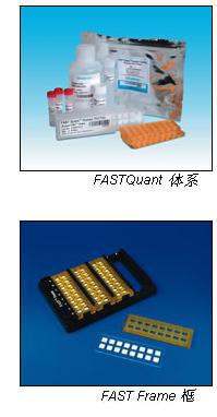 Whatman FAST Quant Cytokine定量试剂盒, 10486257, 10486031, 10486060, 10486063
